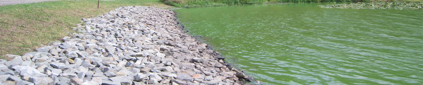 Pond design engineering recreational farm industrial for Design of farm pond pdf
